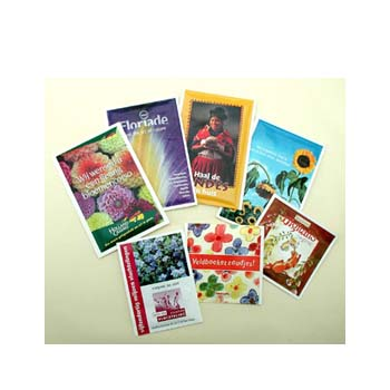 Seed Packets 51 x 50mm