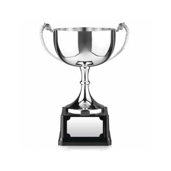 Silver Endurance Cup Trophy - 7.5""